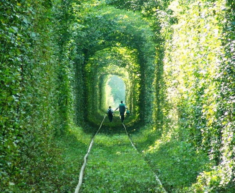 صور من نفق الحب tunnel-of-love-4[3